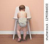 bambino mio rainforest... | Shutterstock . vector #1290386833