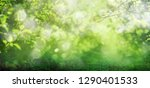 spring grass background with... | Shutterstock . vector #1290401533