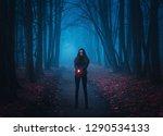 background for wallpaper. girl...   Shutterstock . vector #1290534133