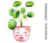 pilea peperomioides  chinese...   Shutterstock . vector #1290536626