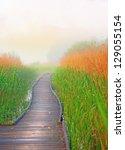 wooden boardwalk path in swamp... | Shutterstock . vector #129055154