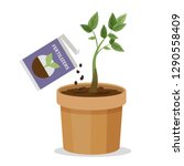 growing plant in the pot using... | Shutterstock .eps vector #1290558409