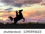 Female And Horse Silhouette...