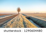 dutch polder landscape in the...   Shutterstock . vector #1290604480