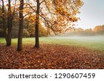 autumn  trees in  city park | Shutterstock . vector #1290607459