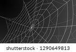 spider web. cobweb illustration ... | Shutterstock .eps vector #1290649813