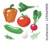 set of vegetables   tomato ...   Shutterstock .eps vector #1290669850