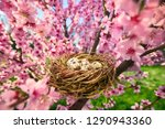 cozy bird's nest with spotted... | Shutterstock . vector #1290943360
