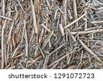 full screen closeup of frosted...   Shutterstock . vector #1291072723