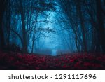 fairy mysterious forest.... | Shutterstock . vector #1291117696