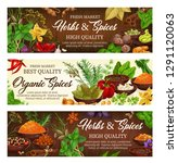 herbs and spices  condiments... | Shutterstock .eps vector #1291120063