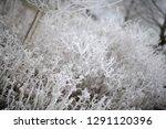 calendar picture with frozen...   Shutterstock . vector #1291120396
