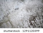 calendar picture with frozen...   Shutterstock . vector #1291120399