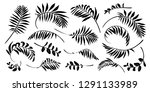 black vector tropical leaves... | Shutterstock .eps vector #1291133989