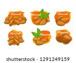 set of vector cartoon almonds ... | Shutterstock .eps vector #1291249159