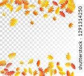 oak  maple  wild ash rowan... | Shutterstock .eps vector #1291314250