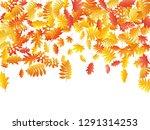 oak  maple  wild ash rowan...   Shutterstock .eps vector #1291314253