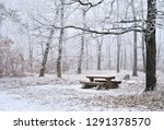 snowy trees in a forest with a...   Shutterstock . vector #1291378570