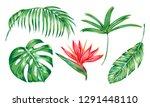 tropical leaves  exotic bird of ... | Shutterstock .eps vector #1291448110