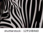 Zebra Illustration. Raster...