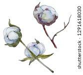 white cotton floral botanical... | Shutterstock . vector #1291618030