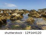 Reef on a Brazilian Beach - stock photo