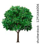 vector realistic tree with... | Shutterstock .eps vector #1291666006