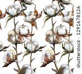 cotton floral botanical flower. ... | Shutterstock . vector #1291678126