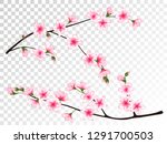 apricot blossom branches set... | Shutterstock .eps vector #1291700503