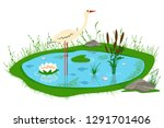 pond with reeds  lily  grass ... | Shutterstock .eps vector #1291701406