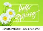 spring background with daisies... | Shutterstock .eps vector #1291734190