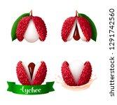 single opened lychee fruits... | Shutterstock .eps vector #1291742560
