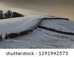 Winters Morning  A Snowy Field...
