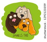 spaniel dog hand drawn vector...   Shutterstock .eps vector #1292123359