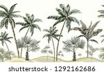 beautiful hand drawn vector... | Shutterstock .eps vector #1292162686