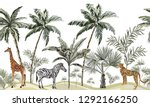 hand drawn tropical vintage... | Shutterstock .eps vector #1292166250
