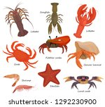 Crustacean vector crab prawns ocean lobster and crawfish or crayfish seafood illustration crustaceans set of sea animals shrimp isolated on white background