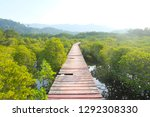 mangrove forest at koh chang... | Shutterstock . vector #1292308330
