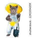 Kitten Farmer In Summer Hat...