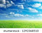 green grass field and blue sky. | Shutterstock . vector #1292368510