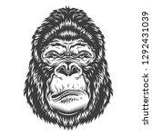 illustration  ferocious gorilla ...   Shutterstock . vector #1292431039