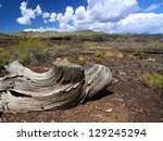craters of the moon national... | Shutterstock . vector #129245294