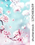 natural spring and summer...   Shutterstock . vector #1292483659
