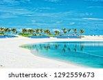 tropical beach in great stirrup ... | Shutterstock . vector #1292559673