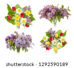 lilac  tulips and narcissus... | Shutterstock . vector #1292590189