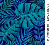 trendy summer tropical leaves... | Shutterstock .eps vector #1292658736