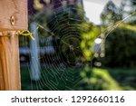 cobweb on wooden frame backlit...   Shutterstock . vector #1292660116
