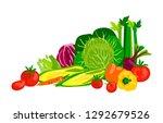 vector vegetable composition... | Shutterstock .eps vector #1292679526