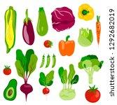vector vegetable composition... | Shutterstock .eps vector #1292682019