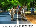 found a farmer on his bullock... | Shutterstock . vector #1292719750